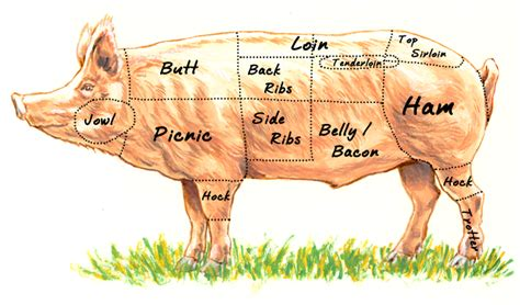 Whole Hog: Part it out, then meat glue it back together